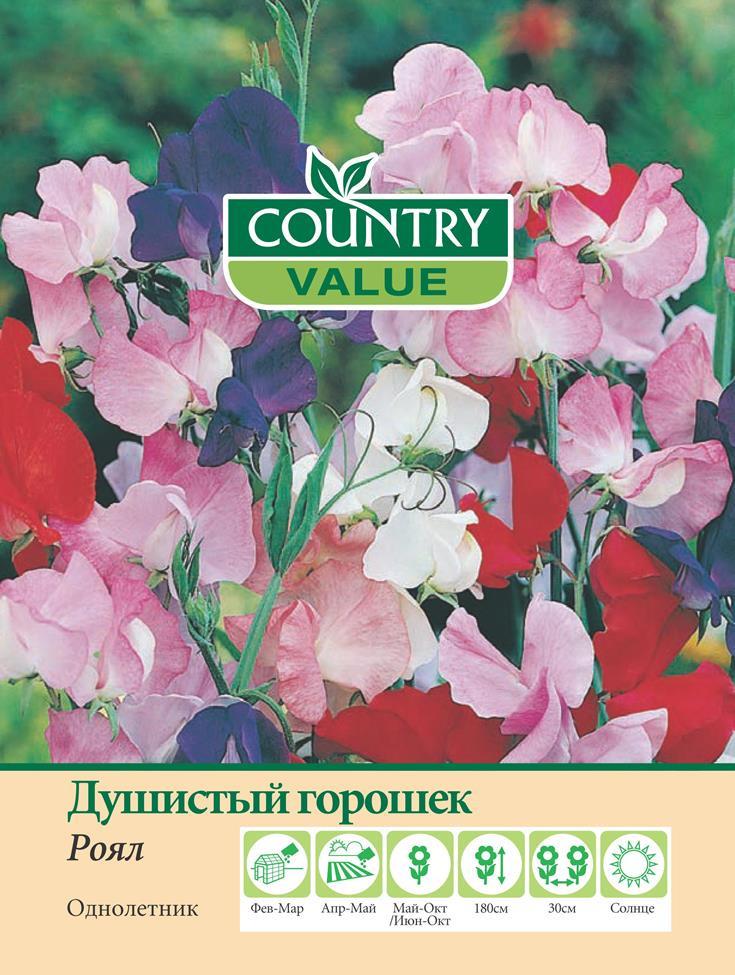 """Семена Country Value """"Душистый горошек Роял"""", 20307, 20 шт"""