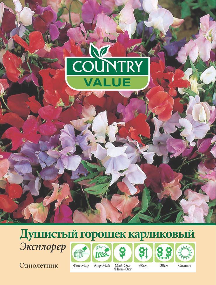 """Семена Country Value """"Душистый горошек карликовый Эксплорер"""", 20309, 15 шт"""