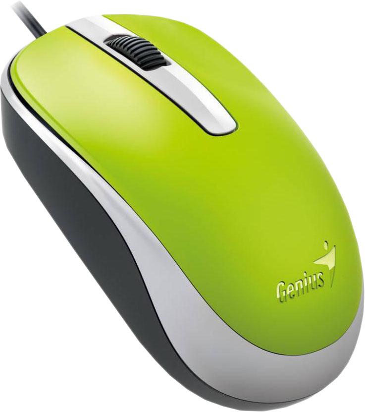 Мышь Genius DX-120, зеленый
