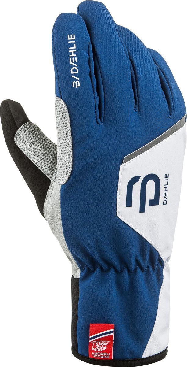 Перчатки для мальчика Bjorn Daehlie Track Jr, цвет: синий. 331027_25300. Размер M (7/7,5) носки bjorn daehlie athlete light цвет белый 331084 12000 размер m 40 42 page 7