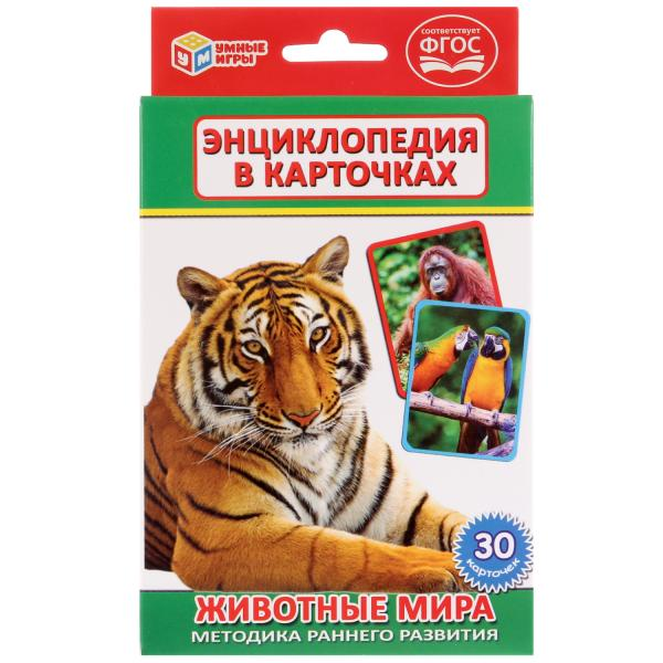 Карточки развивающие Умка Животные мира, 265353, 30 карточек карточки на магнитах умка учим алфавит и цифры дисней принцессы в кор 60шт