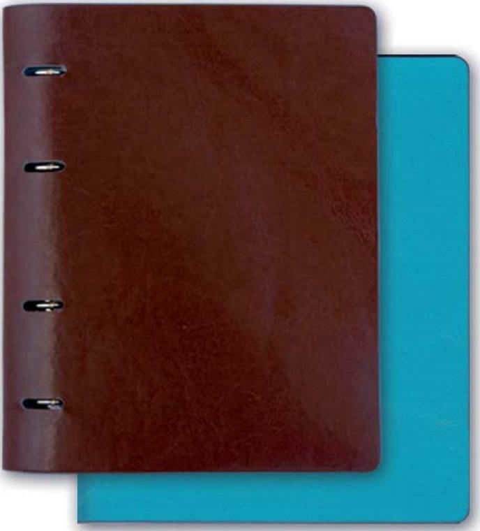 Тетрадь Феникс+, 36091, коричневый, голубой, 175х220 мм, 160 л