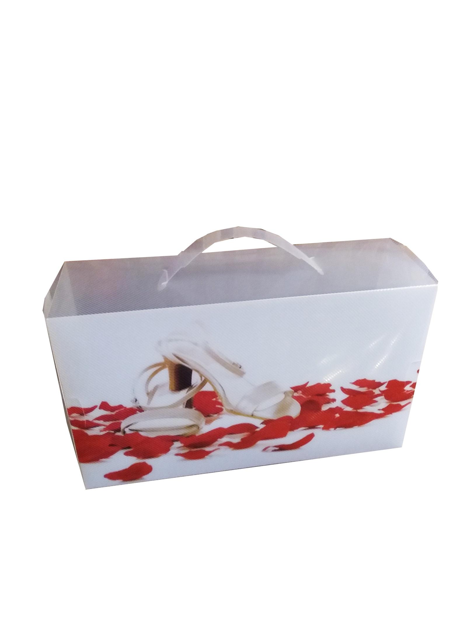 Кофр для хранения вещей Камея Туфелька-2, box3, прозрачныйbox3Коробка с ручкой для женской обуви с принтом, пластик, 31*18*10 см. Поставляется в сложенном виде.