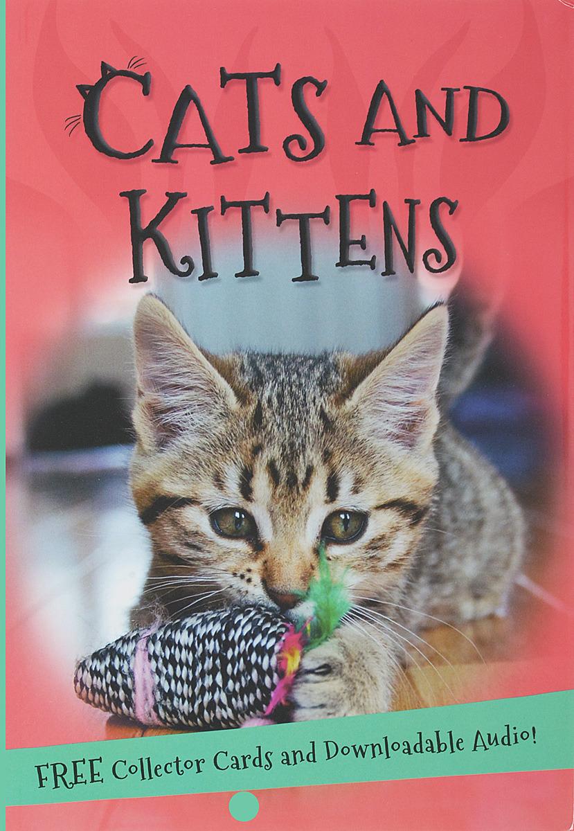 It's all about... Cats and Kittens цена в Москве и Питере
