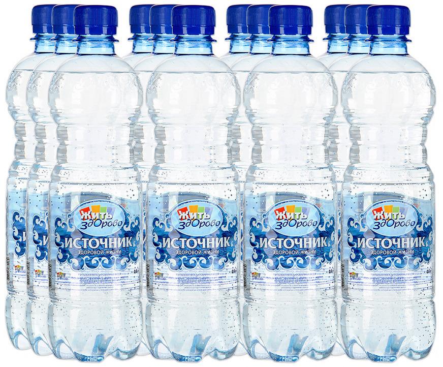 Вода Источник здоровой жизни питьевая негазированная, 12 шт по 0,6 л