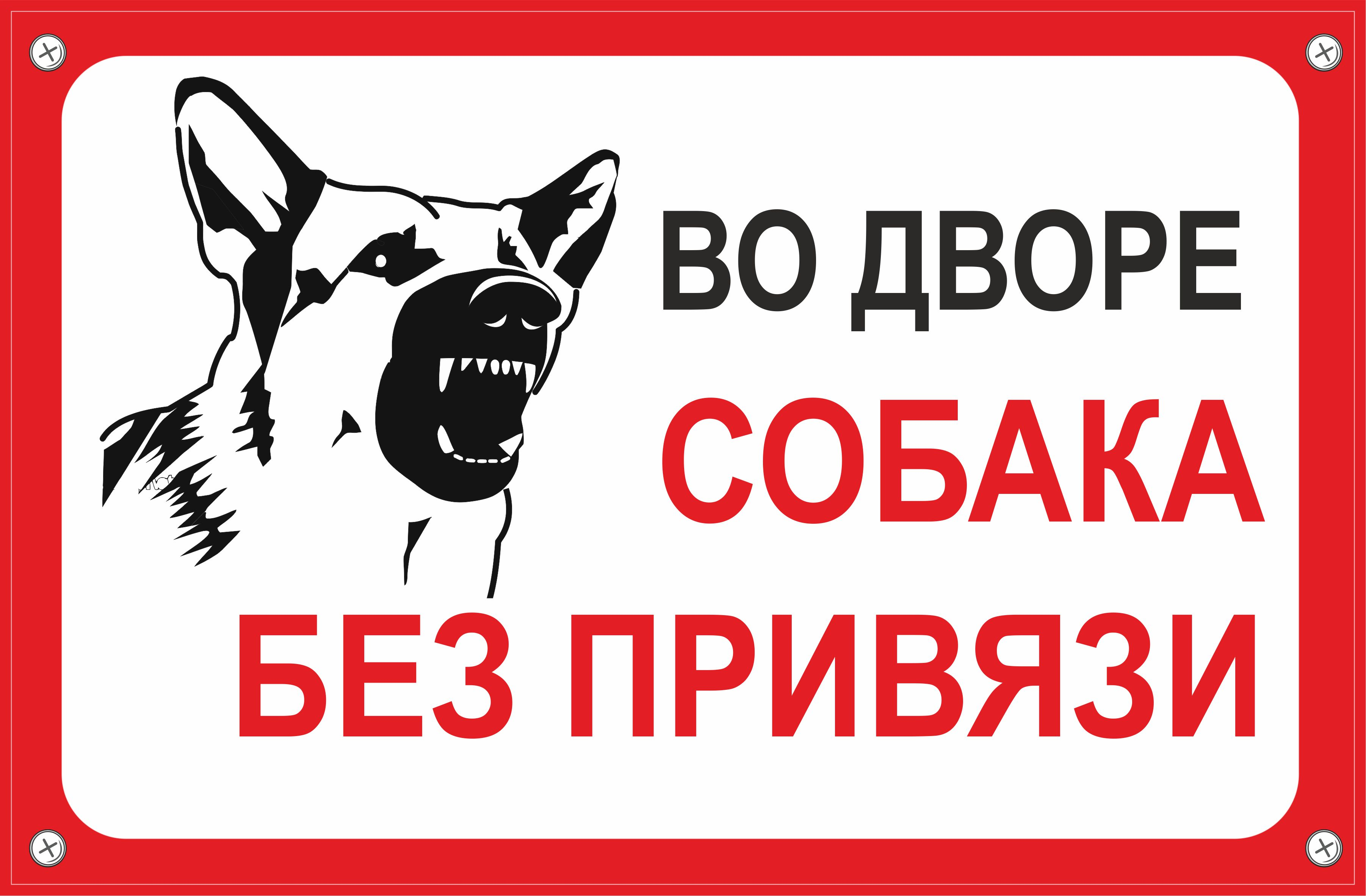 Табличка TPS 004 Собака без привязи, пластик 3 мм,30*19,5 см табличка tps 004 собака без привязи пластик 3 мм 30 19 5 см