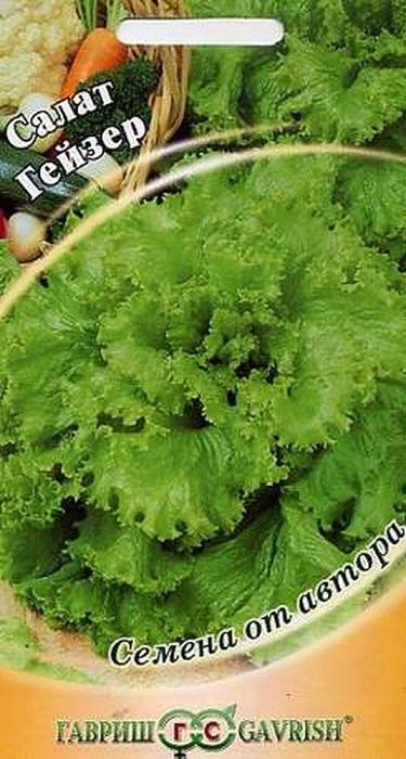 Семена Гавриш Салат Гейзер, 002820, 1 г002820Среднеспелый (64 дня от полных всходов до уборки зелени) сорт. Рекомендуется для выращивания в открытом и защищенном грунте. Посев семян непосредственно в грунт в апреле - мае. На рассаду высевают в марте - апреле, высадка рассады – в мае. Листовой, имеет полуприподнятую розетку крупных зеленых листьев. Лист крупный, длиной 24 см, шириной 23 см, зеленый, веерообразный, с мелкозубчатонадрезанным волнистым краем, с нежной полухрустящей консистенцией листьев, слабопузырчатой поверхностью. Масса розетки около 400 г. Вкус отличный. Устойчив к цветушности, к краевому ожогу листьев. Схема посадки 30x30 см. Урожайность 4,0-5,0 кг/ кв. м. Рекомендуем!
