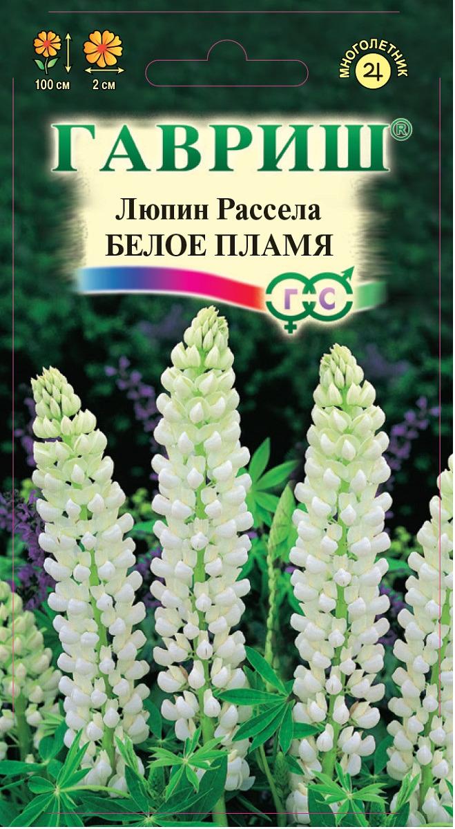 Семена Гавриш Люпин Белое пламя, 005461, 0,5 г005461Многолетнее красивоцветущее растение семейства бобовых. Его высокие строго вертикальные цветоносы до 100 см высотой украшены эффектными пальчатыми листьякв. м. Соцветие – кремово-белая плотная, многоцветковая кисть длиной до 45 см, цветки размером 2 см, многочисленные, душистые. Цветет с первых чисел июня в течение 30-40 дней. Светолюбив, но выносит легкую полутень. Хорошо растет на любых нетяжелых почвах с рН 5,5-6,0. Размножается семенакв. м. Высевать лучше под зиму свежесобранные семена или ранней весной непосредственно в грунт. Используют люпины в групповых посадках большими массивами на дальнем плане, на газонах пред живой изгородью или вместе с другими многолетниками в смешанных рабатках.