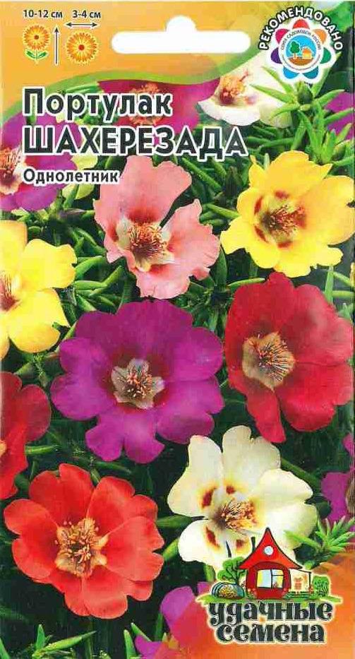 Семена Гавриш Портулак Шахерезада смесь, 10002996, 0,1 г10002996Крупноцветковая смесь сортов. Растения со стелющимися сочными стеблями, высотой 10-12 см. Цветки крупные, очень яркие, самой разнообразной окраски, диаметром 3-4 см. Цветки открываются только в ясные, солнечные дни. Цветет с июля до заморозков. Широко используется для оформления бордюров, каменистых горок, выращивают портулак также в контейнерах, горшках и балконных ящиках.