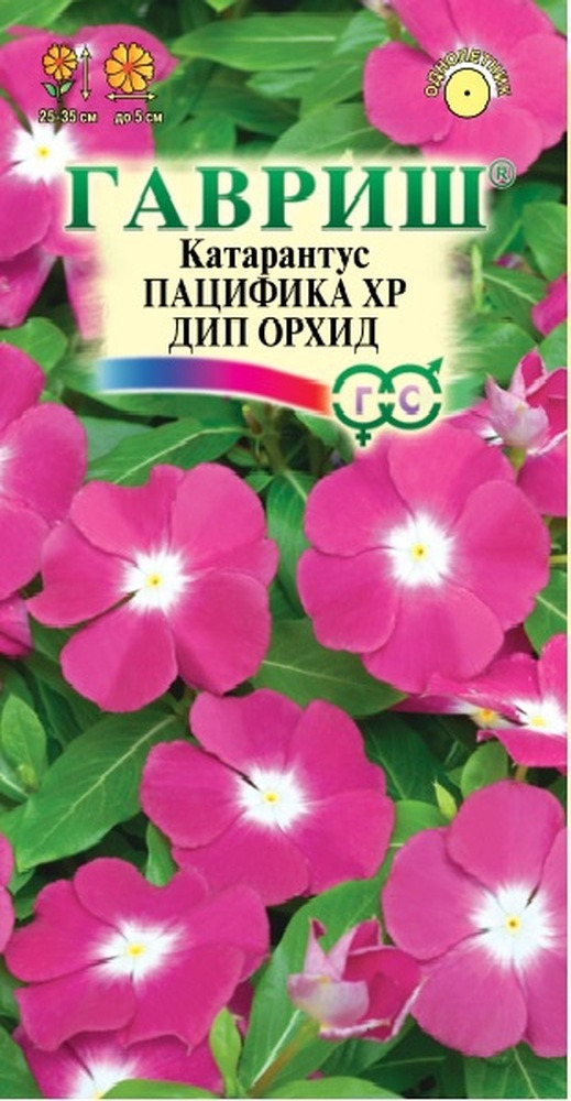 Семена Гавриш Катарантус Пацифика ХР Дип Орхид, 1912237543, 7 шт