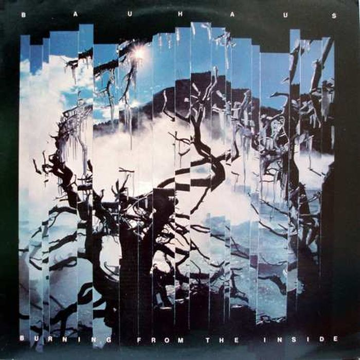 Bauhaus Bauhaus. Burning From The Inside. Re-Issue (LP) bauhaus bauhaus the sky s gone out