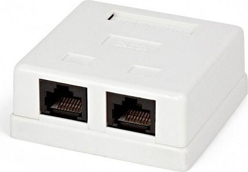 Розетка Cablexpert RJ-45, внешняя, экранированная, 2 порта, белый переходникeco line 1 розетка 2 usb порта цвет белый