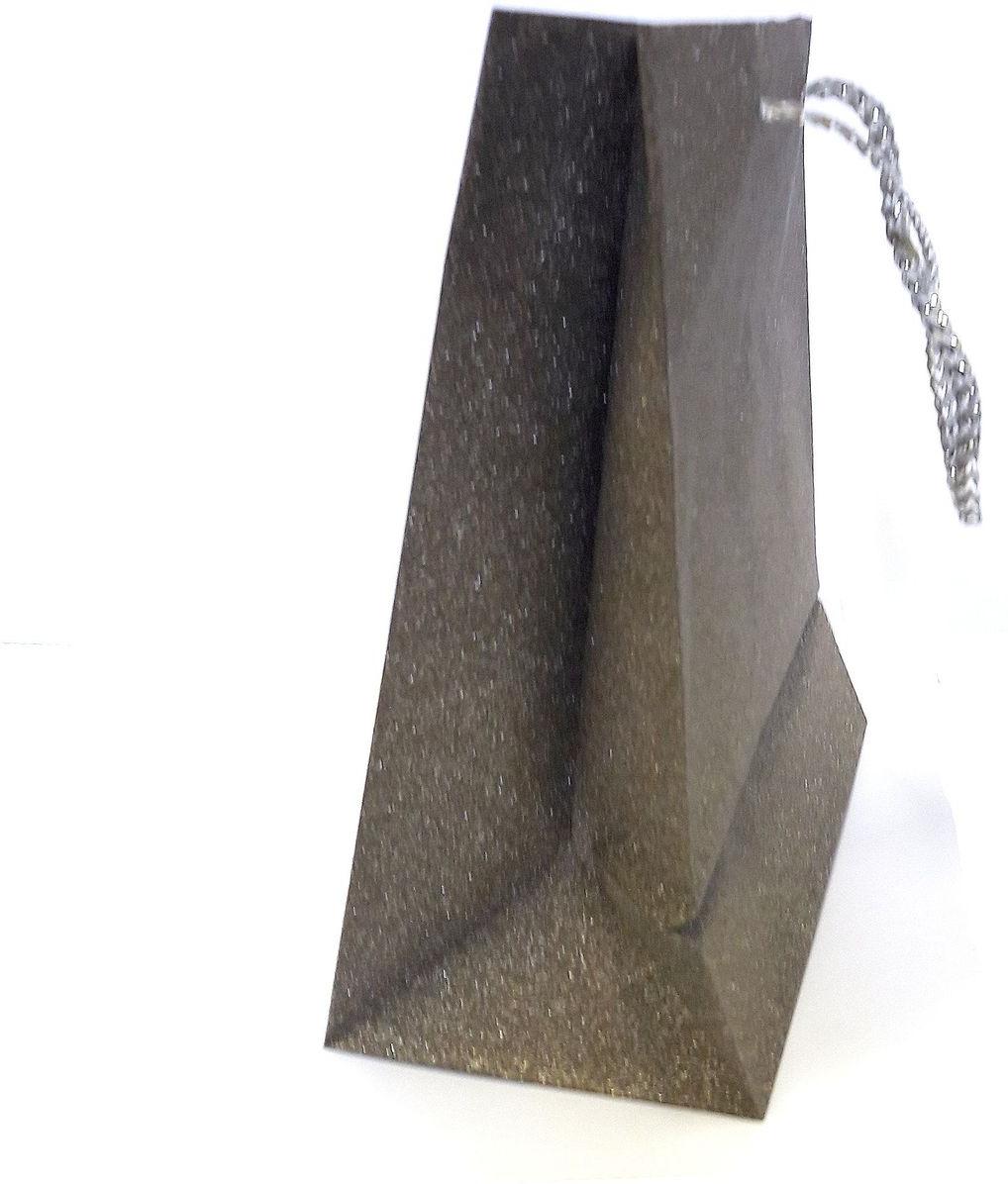 Пакет подарочный Яркий Праздник Однотонный, цвет: шоколад, 17,8 х 22,9 х 10,2 см пакет подарочный яркий праздник однотонный цвет розовый 17 8 х 22 9 х 10 2 см