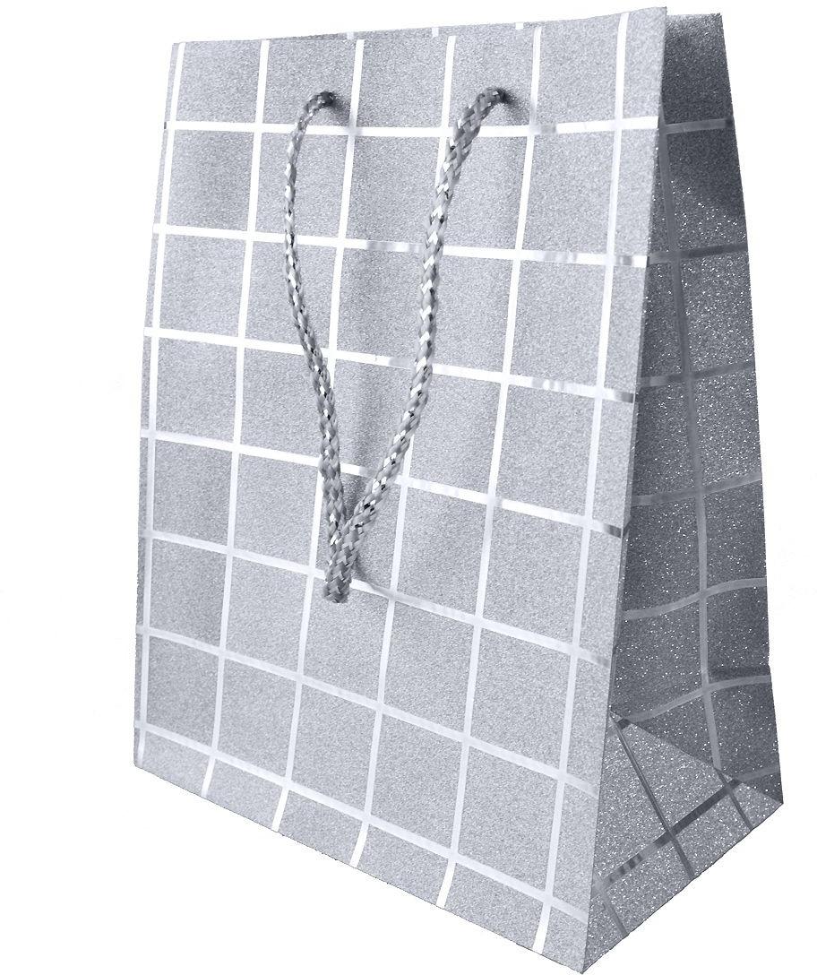 Пакет подарочный Яркий Праздник Клетка, цвет: серебристый, 11,4 х 14,6 х 6,35 см пакет подарочный яркий праздник однотонный цвет розовый 17 8 х 22 9 х 10 2 см