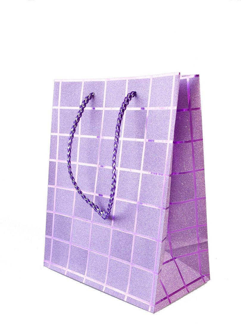 Пакет подарочный Яркий Праздник Клетка, цвет: фиолетовый, 11,4 х 14,6 х 6,35 см пакет подарочный яркий праздник однотонный цвет розовый 17 8 х 22 9 х 10 2 см