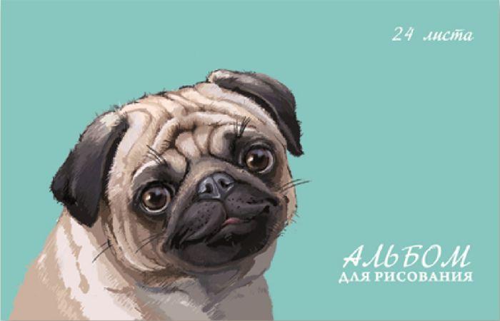 Альбом для рисования Феникс+, 47102/10 МОПС, 24 листа цены