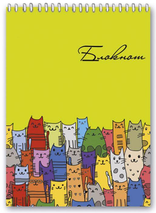 Блокнот Феникс+ Цветные коты, клетка, 45877/5, 80 листов w бизнес блокнот 80л а4ф 80 гр кв м клетка тв переплет fine line бирюза