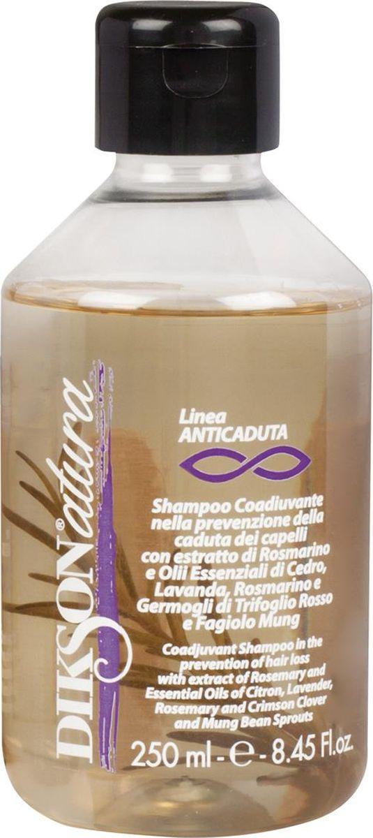 Шампунь для волос Dikson Diksonatura Sham.Anticaduta, против выпадения, 250 мл kapous шампунь против выпадения волос profilactic 250 мл