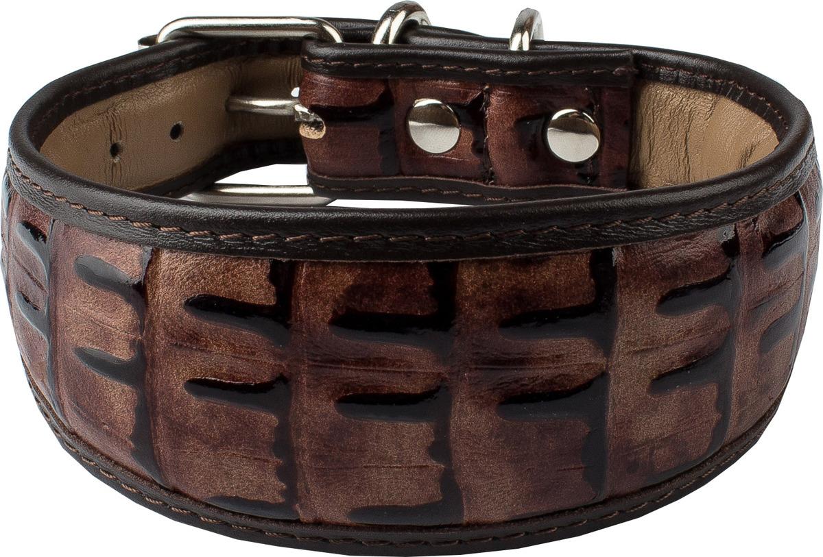 Ошейник для собак Dimanche, 834/46/51, коричневый, обхват шеи 28,5-32,5 см, размер S