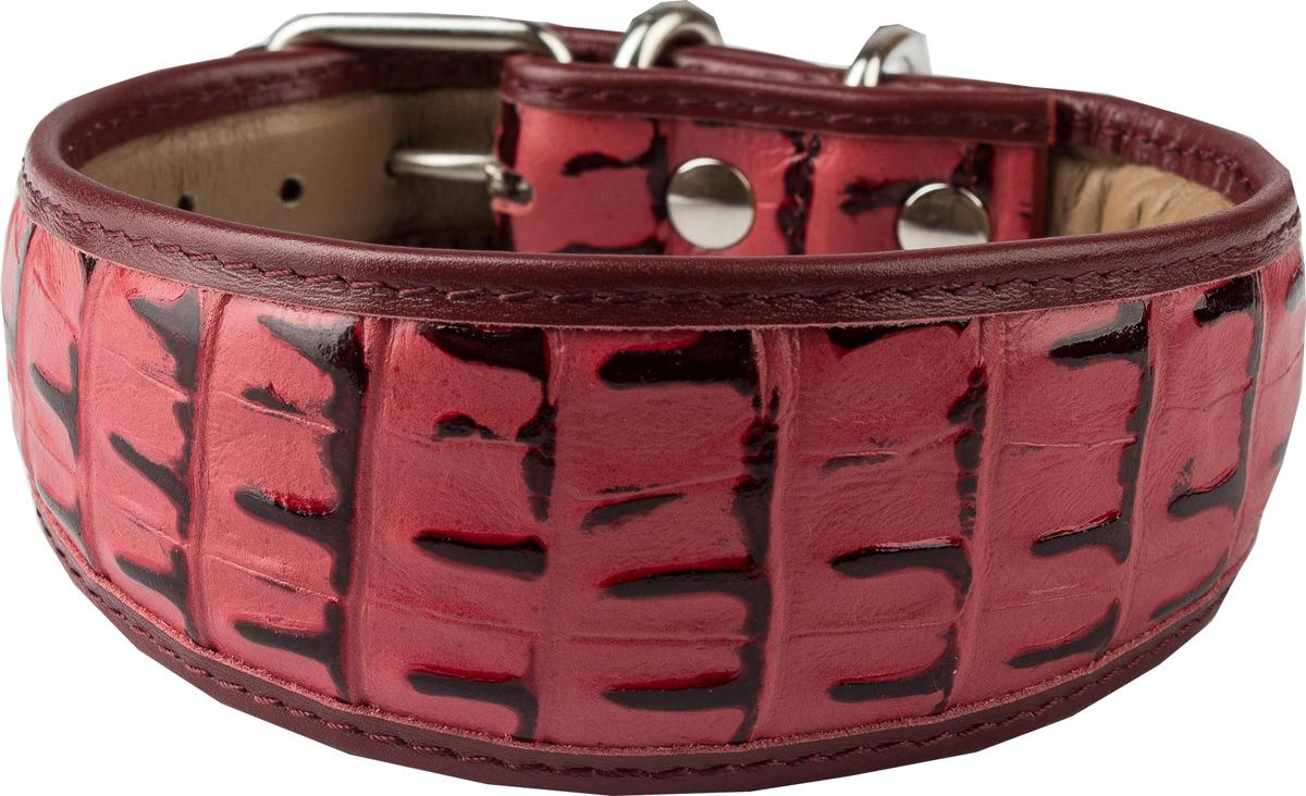 Ошейник для собак Dimanche, 834/21/51, красный, обхват шеи 28,5-32,5 см, размер S