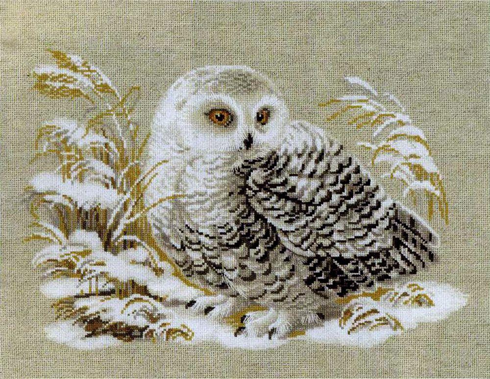 картинки для декупажа сова вышивальщица мендеш предложил