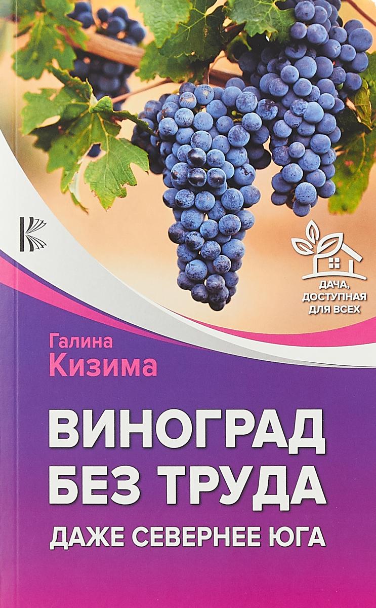 Галина Кизима Виноград без труда. Даже севернее юга
