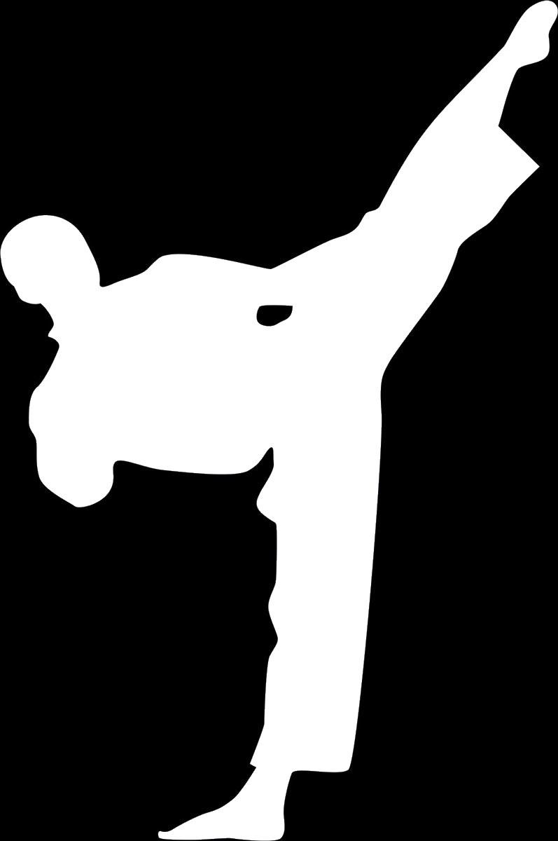 Фото - Наклейка ОранжевыйСлоник виниловая Карате2 для авто или интерьера, Винил авто