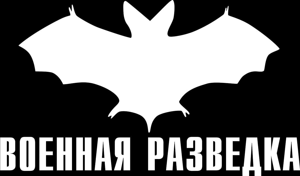 Фото - Наклейка ОранжевыйСлоник виниловая Разведка для авто или интерьера, Винил авто
