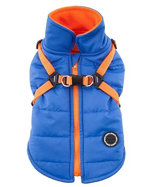 Одежда для собак Puppia (Южная Корея) MOUNTAINEER II PAPD-VT1366-RB-L, голубой