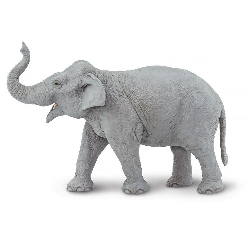 картинки предметов слон вам кажется