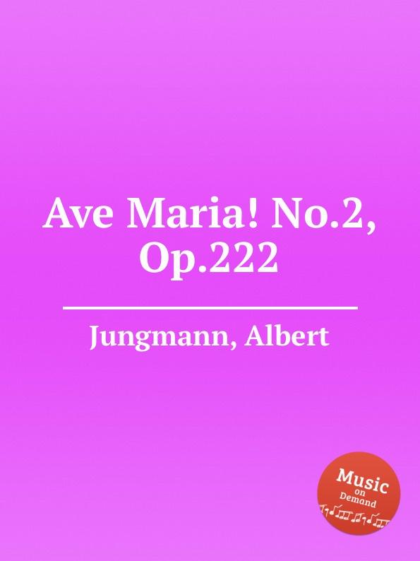 A. Jungmann Ave Maria. No.2, Op.222 l luzzi ave maria op 80