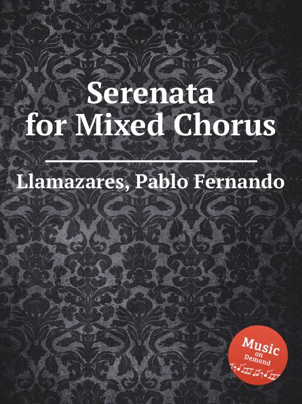 P.F. Llamazares Serenata for Mixed Chorus colorblock mixed print swimsuit