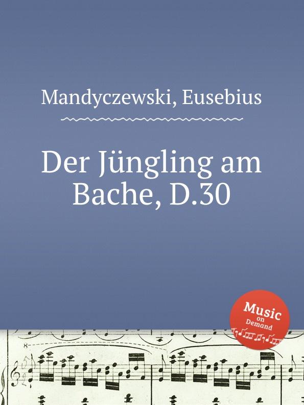 E. Mandyczewski Der Jungling am Bache, D.30 e mandyczewski der jungling an der quelle d 300