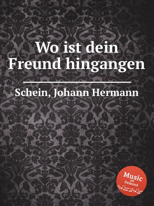 J.H. Schein Wo ist dein Freund hingangen
