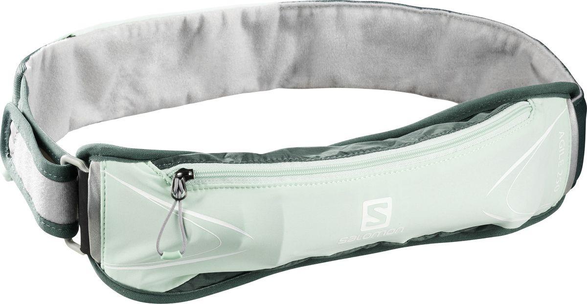 Сумка на пояс Salomon Agile 250 Belt Set, LC1090500, бирюзовый