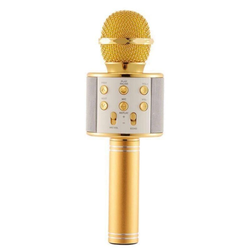 Микрофон Wster 858, 4594, золотой цена