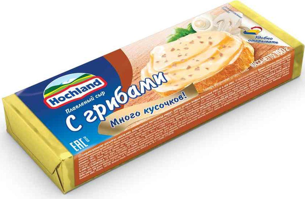 Плавленый сыр Hochland С грибами, 100 г цена