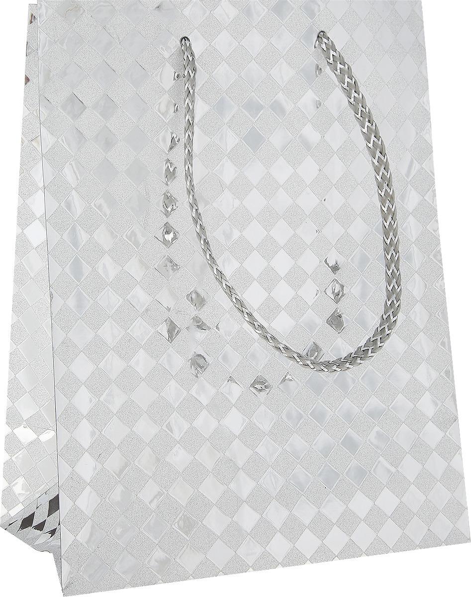 Пакет подарочный Яркий Праздник Клетка, цвет: серебристый, 17,8 х 22,9 х 10,2 см пакет подарочный яркий праздник однотонный цвет розовый 17 8 х 22 9 х 10 2 см