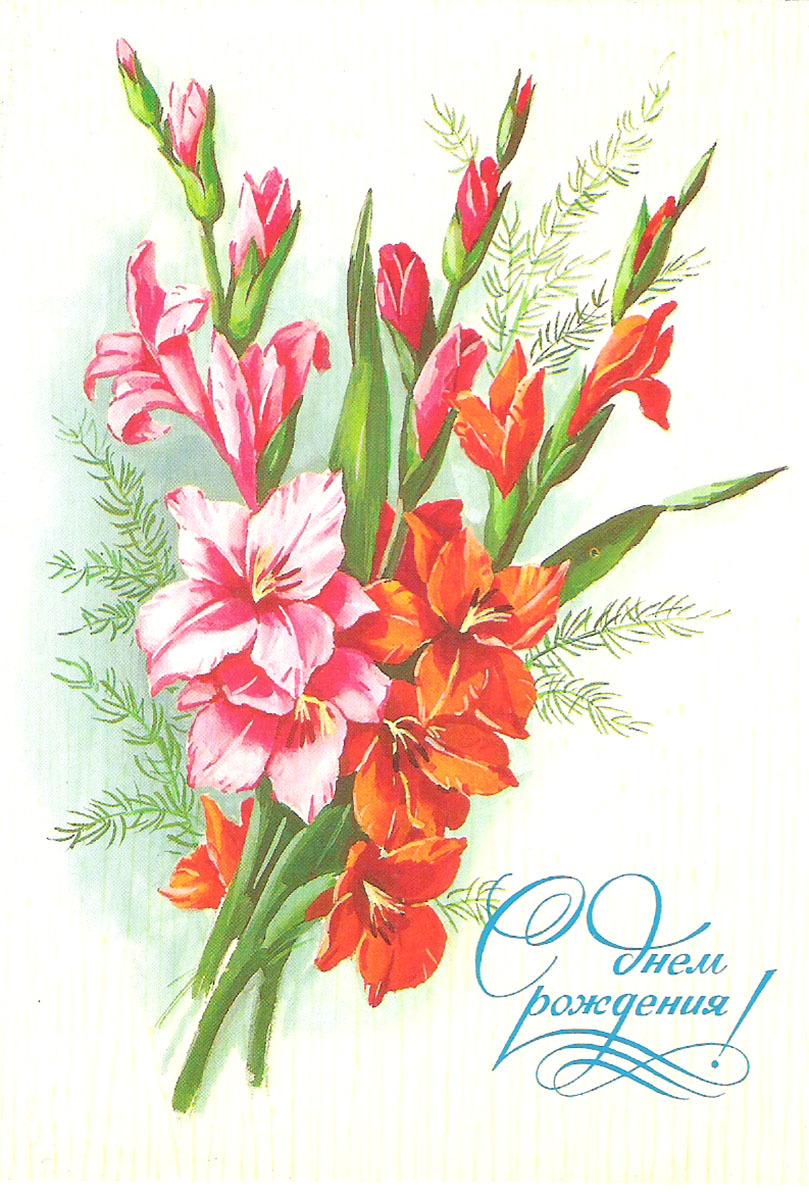 С днем рождения открытки гладиолусы, картинки поздравлениями днем