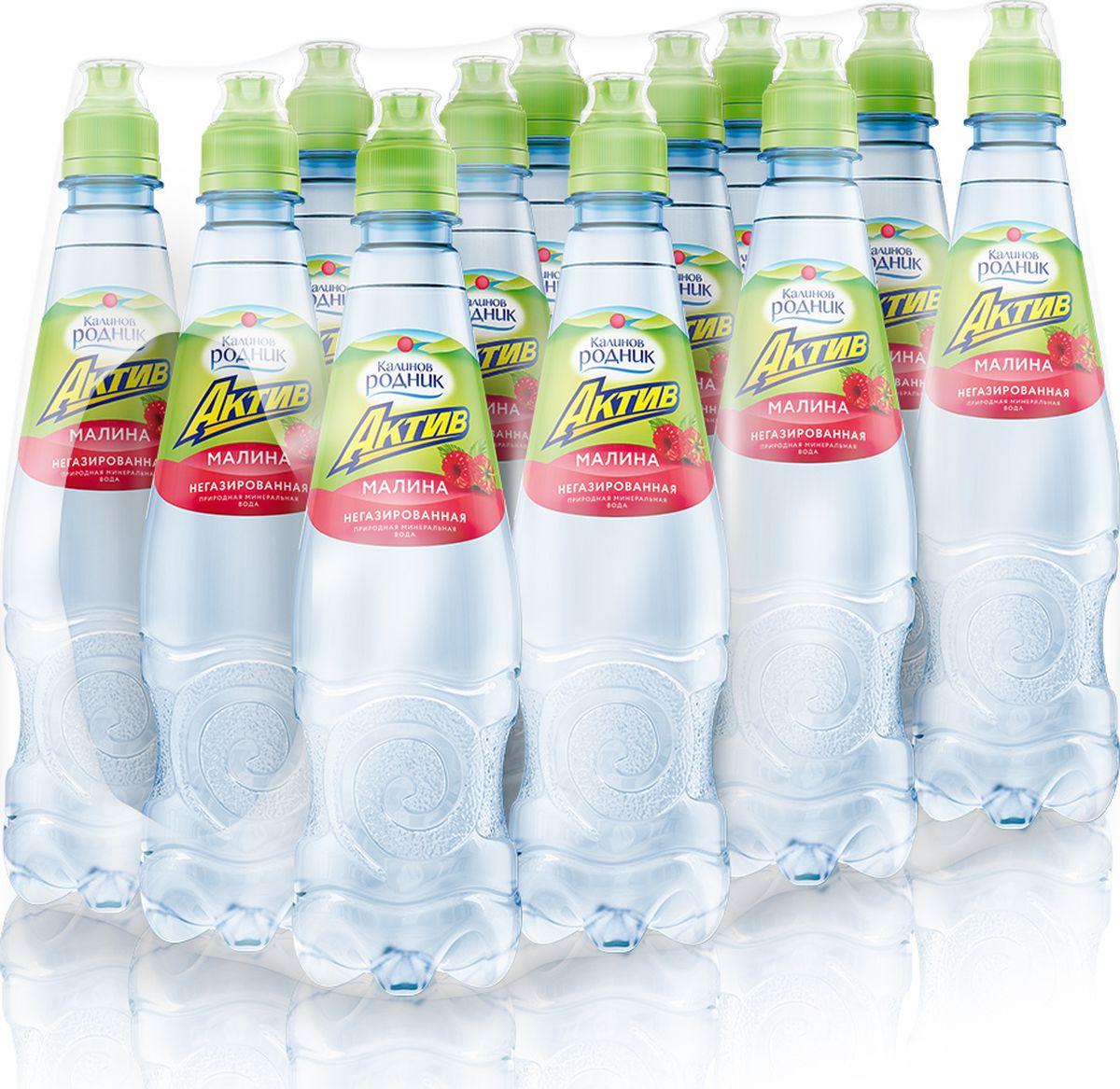 Вода Калинов Родник Актив со вкусом малины, 12 шт по 500 мл вода калинов родник актив со вкусом малины 12 шт по 500 мл