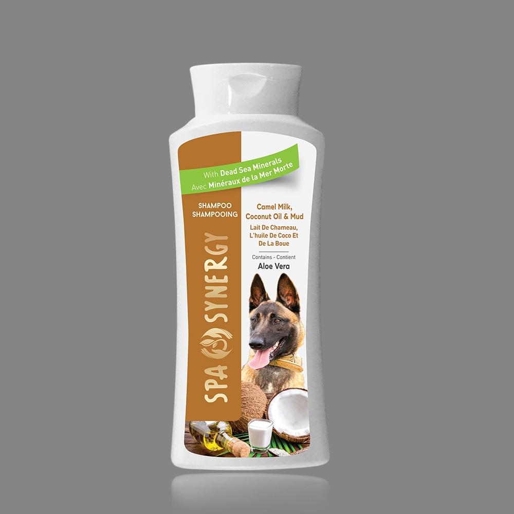 Шампунь для животных Allied for special Dead Sea product Верблюжье Молоко, для собак, грязевой шампунь цена