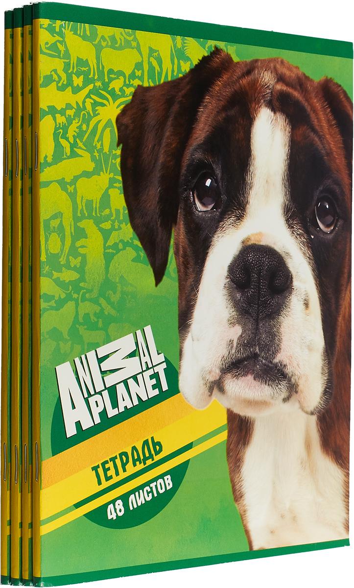 Набор тетрадей Action! Animal Planet 48 листов в клетку, AP-AN 4803/5, 4 шт канцелярский набор action animal planet 6 предметов pvc пенал