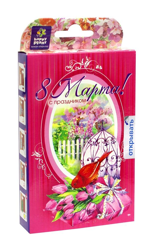 Набор для создания открытки Happy Plant Букет тюльпанов, HPS-232 набор подарочный для выращивания happy plants живая открытка лето в кармане