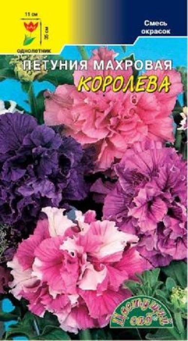 Семена Цветущий сад Петуния Королева смесь махровая, 0,01 г4607021801669Петуния формирует ветвистый стебель высотой до 35 см. Крупные, махровые, душистые цветки расположены по одному в пазухах листьев. Петунию используют для создания неповторимых клумб и бордюров, а также для посадки в вазоны, балконные ящики и висячие корзины. Цветовая гамма этой смеси очень разнообразна. АГРОТЕХНИКА Выращивается рассадным способом, семена при этом лишь слегка присыпают легким грунтом или производят посев под стекло. В грунт рассаду высаживают, когда минует угроза заморозков. Петуния предпочитает богатую питательными веществами супесчаную почву на солнечном месте. Полив умеренный, так как петуния не переносит переувлажнения.