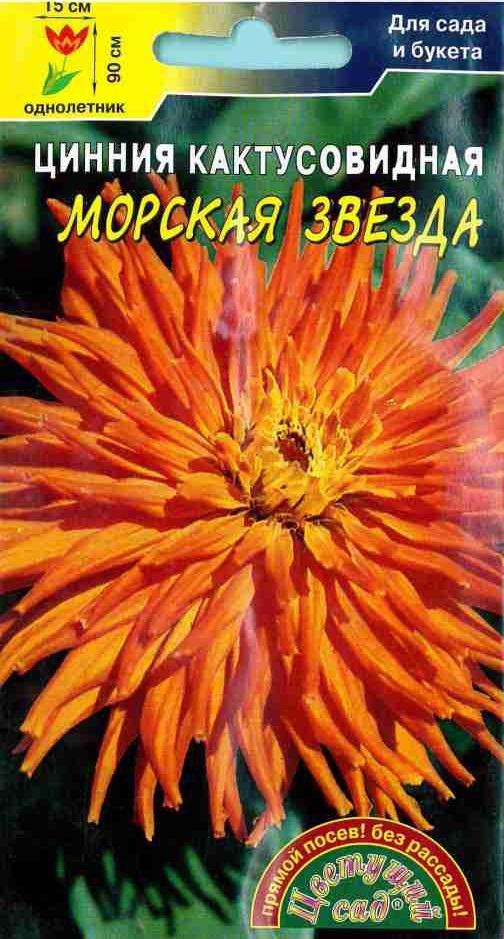 Семена Цветущий сад Цинния Кактусовидная Морская Звезда, 0,2 г семена цветущий сад цинния сиреневый туман 0 3 г