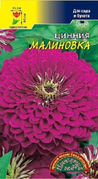Семена Цветущий сад Цинния Малиновка, 0,3 г семена цветущий сад цинния сиреневый туман 0 3 г