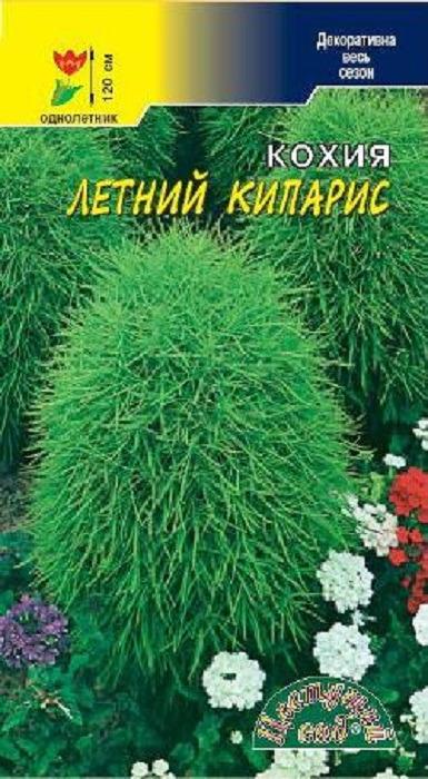 Семена Цветущий сад Кохия Летний кипарис, 0,8 г4607021802956Представляем эффектное, неприхотливое густоветвящееся растение высотой до 1.2 м. Многочисленные веточки и узкие, изящные листья образуют плотный куст овально-пирамидальной формы. Кохия великолепно подходит для создания живой изгороди и групповых посадок на газоне, а также отлично смотрится в центре клумбы. Это растение будет изумрудным украшением для Вашего сада все лето, а осенью его листья станут багряно-красные. Агротехника.Выращивается как рассадным способом, так и прямым посевом семян в грунт под зиму или весной. При посеве семена не заделывают, а лишь слегка присыпают легким грунтом, или производят посев под стекло ( рассадный способ). Кохия неприхотлива, ей подходит любая садовая земля на солнечном месте или в полутени. Растение хорошо переносит стрижку и сохраняет заданную форму шара, куба, и т.д. Рекомендуем!