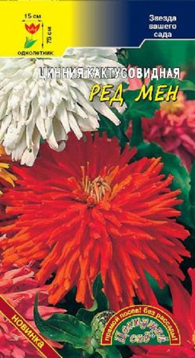 Семена Цветущий сад Цинния Кактусовидная Ред мен, 0,2 г семена цветущий сад цинния сиреневый туман 0 3 г