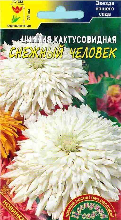 Семена Цветущий сад Цинния Кактусовидная Снежный человек, 0,3 г семена цветущий сад цинния сиреневый туман 0 3 г