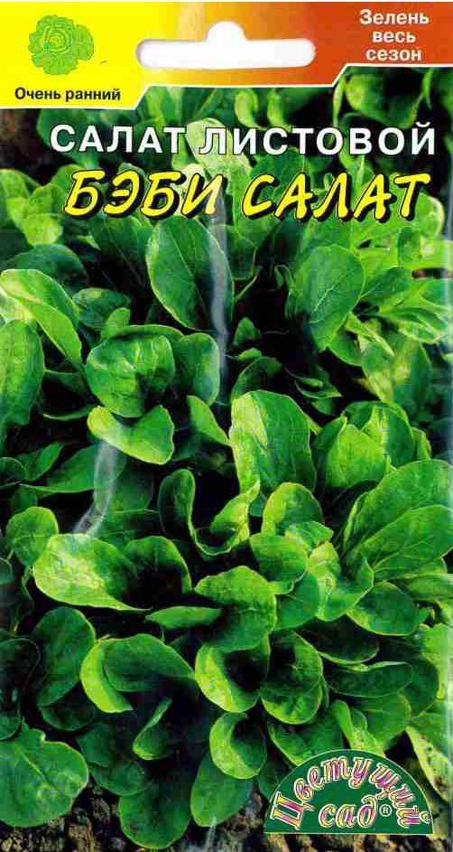 Семена Цветущий сад Салат Бэби, 0,5 г4607021813303Очень ранний сорт листового салата, период от всходов до уборки урожая 35 - 45 дней. Растение прямостоячее, диаметром 26 см. Лист крупный, пузырчатый, светло-зеленый, с сильно волнистым краем. Ценность сорта: стабильный ранний урожай; крупные, сочные листья отличных вкусовых качеств; пригодность для посева с ранней весны до осени, высокие декоративные качества. АГРОТЕХНИКА Салат выращивается прямым посевом семян в грунт с середины апреля до конца августа, а также под зиму с конца октября до начала ноября. Сеют рядовым способом, располагая ряды через 35 см, глубина заделки семян не более 0,5 см. Всходы прореживают, дальнейший уход заключается в подкормках, поливах, рыхлении почвы. Рекомендуем!